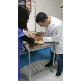 endoscopia cachorro agendar Nova Gerty